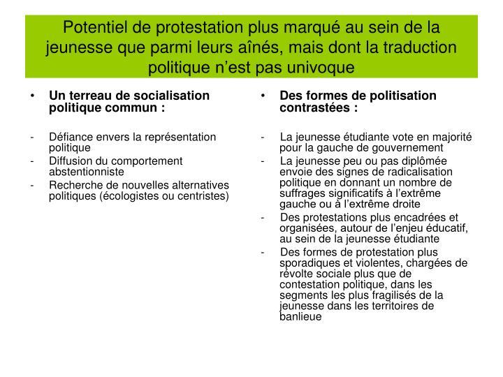 Potentiel de protestation plus marqu au sein de la jeunesse que parmi leurs ans, mais dont la traduction politique nest pas univoque