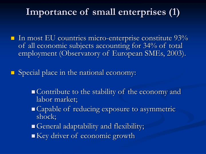 Importance of small enterprises (1)