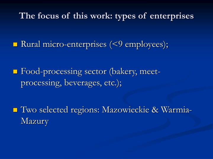 The focus of this work: types of enterprises