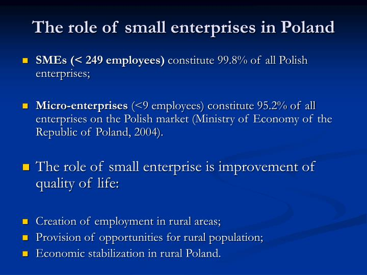 The role of small enterprises in Poland