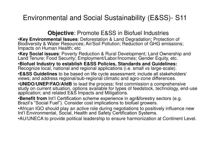 Environmental and social sustainability e ss s11