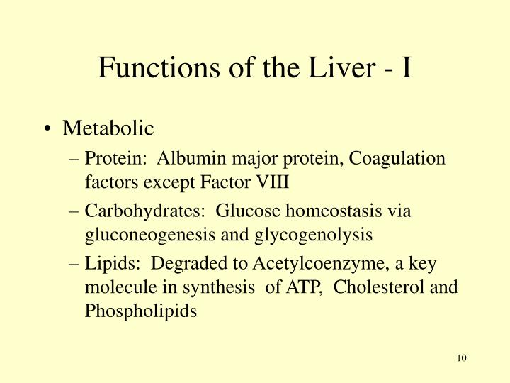 Functions of the Liver - I