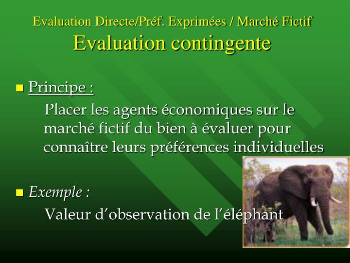 Evaluation Directe/Préf. Exprimées / Marché Fictif