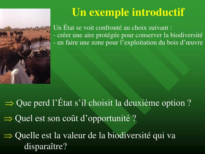 Un exemple introductif
