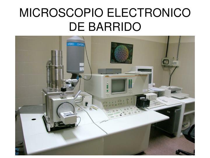 MICROSCOPIO ELECTRONICO DE BARRIDO