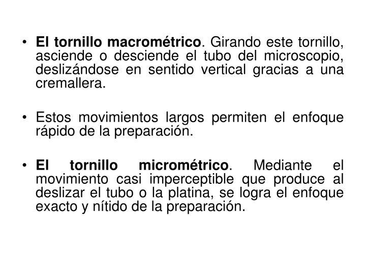 El tornillo macrométrico