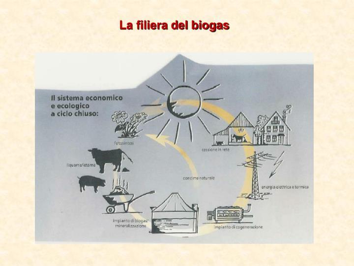 La filiera del biogas