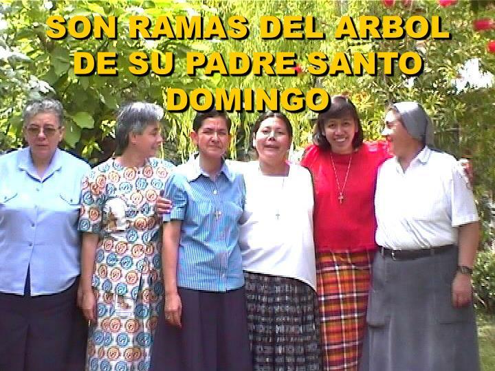 SON RAMAS DEL ARBOL DE SU PADRE SANTO DOMINGO
