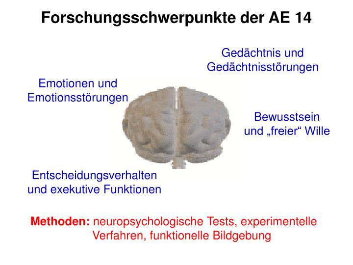 Forschungsschwerpunkte der AE 14