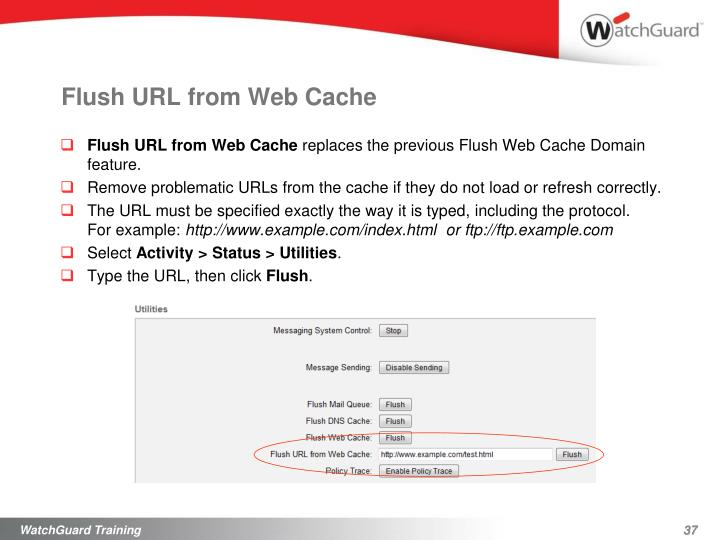 Flush URL from Web Cache