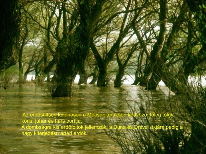 Az erdősültség különösen a Mecsek területén kedvező, főleg tölgy, kőris, juhar és hárs borítja.