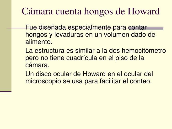 Cámara cuenta hongos de Howard