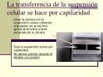 la transferencia de la suspensi n celular se hace por capilaridad