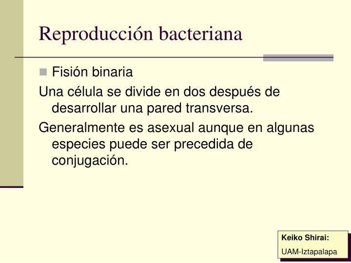 Reproducción bacteriana