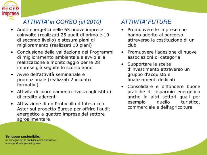 ATTIVITA' in CORSO (al 2010)