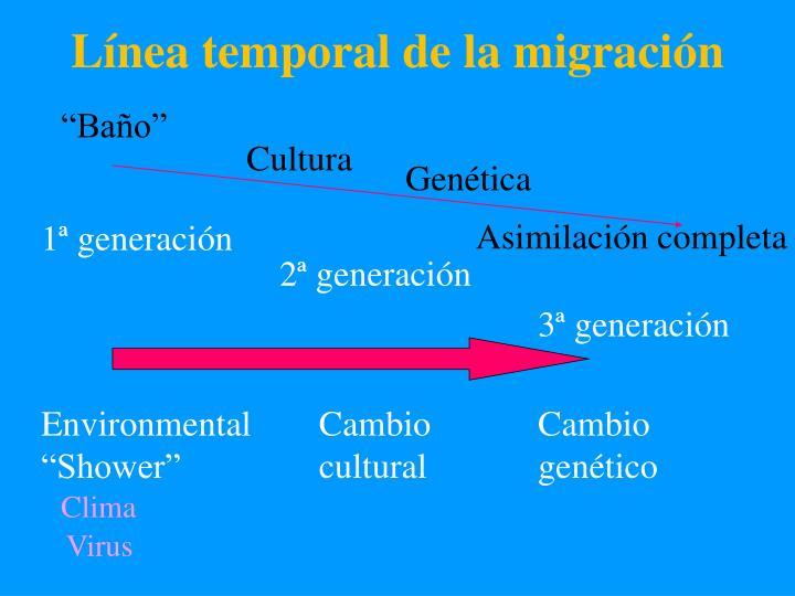 Línea temporal de la migración