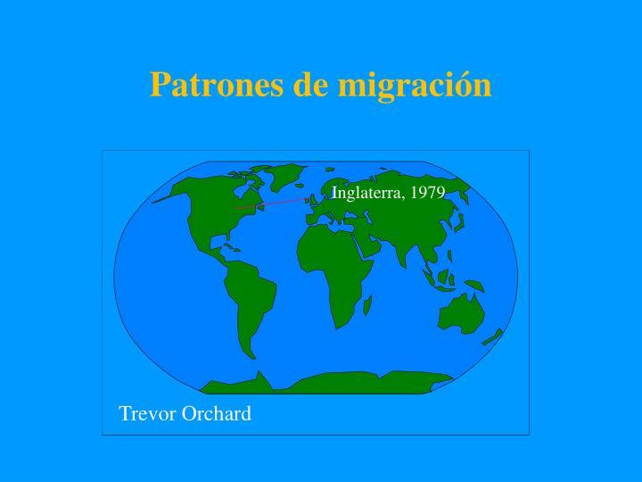 Patrones de migración