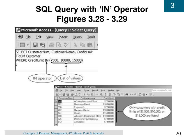 SQL Query with 'IN' Operator