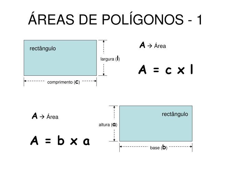 ÁREAS DE POLÍGONOS - 1
