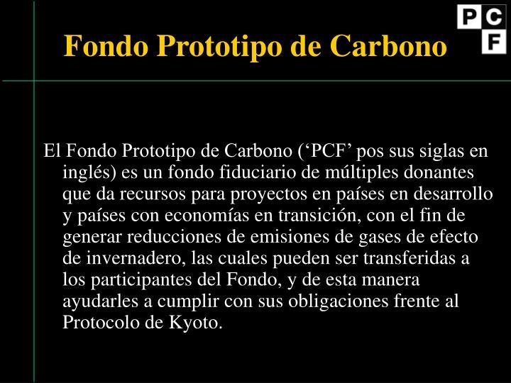 Fondo Prototipo de Carbono