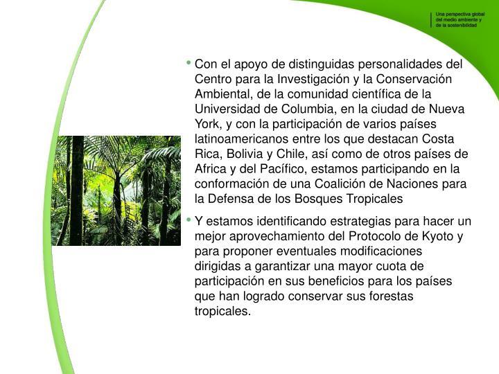 Con el apoyo de distinguidas personalidades del Centro para la Investigacin y la Conservacin Ambiental, de la comunidad cientfica de la Universidad de Columbia, en la ciudad de Nueva York, y con la participacin de varios pases latinoamericanos entre los que destacan Costa Rica, Bolivia y Chile, as como de otros pases de Africa y del Pacfico, estamos participando en la conformacin de una Coalicin de Naciones para la Defensa de los Bosques Tropicales