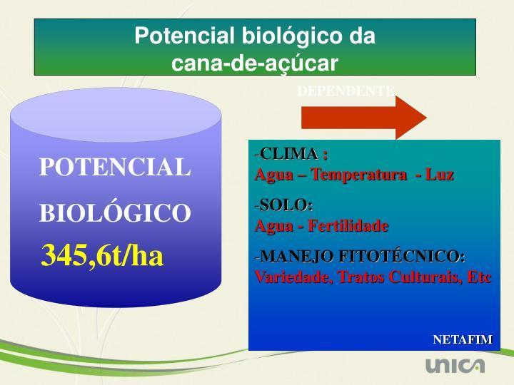 Potencial biológico da