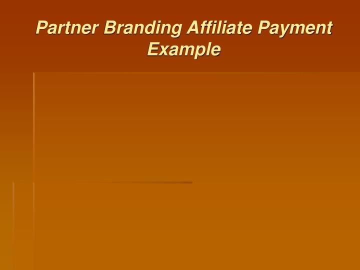 Partner Branding Affiliate Payment Example