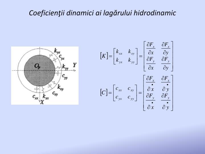 Coeficienţii dinamici ai lagărului hidrodinamic