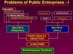 problems of public enterprises i