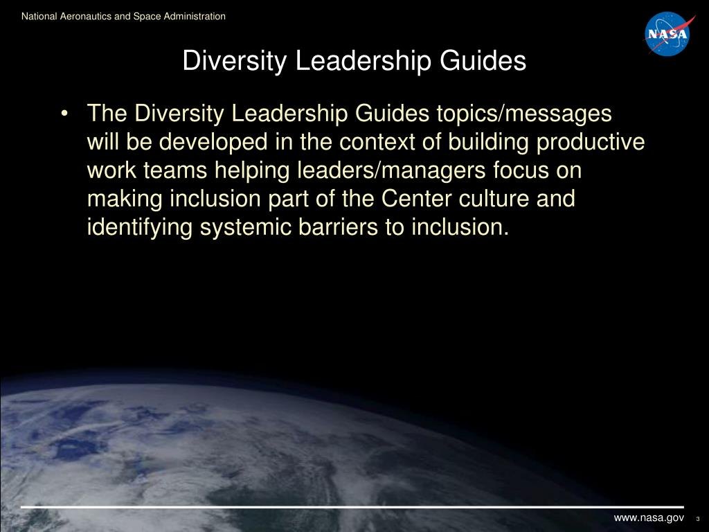Diversity Leadership Guides