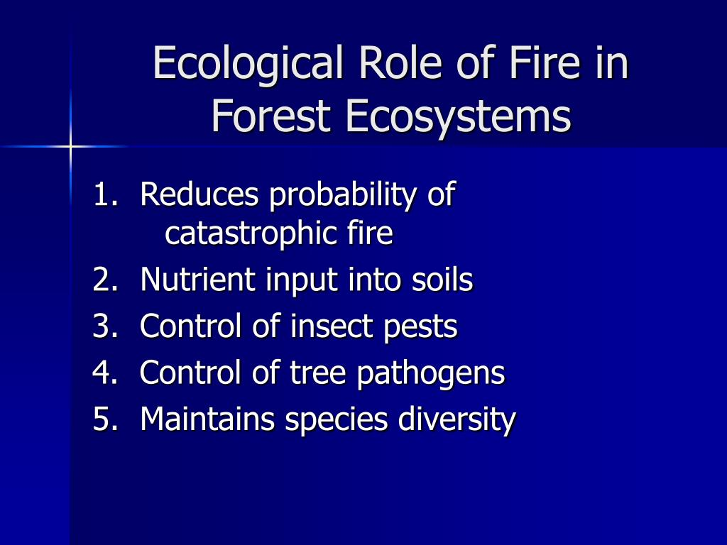Ecological Role of Fire in Forest Ecosystems