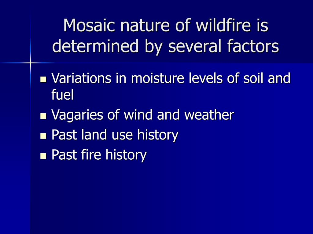 Mosaic nature of wildfire is determined by several factors