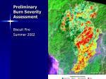 preliminary burn severity assessment