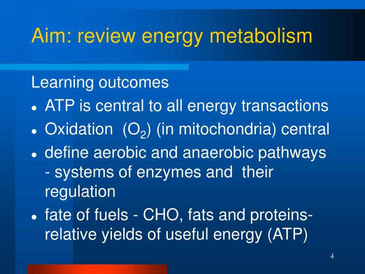 Aim: review energy metabolism