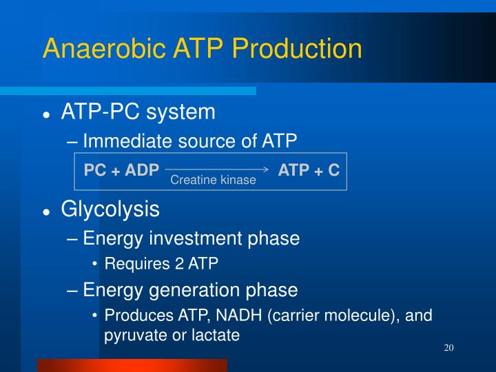 PC + ADP