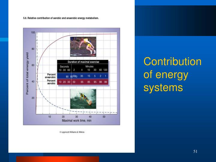 Contribution of energy systems