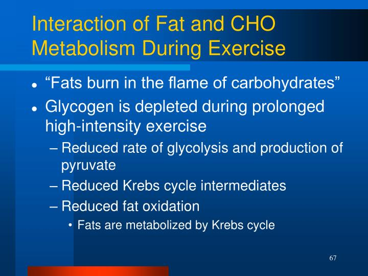 Interaction of Fat and CHO Metabolism During Exercise
