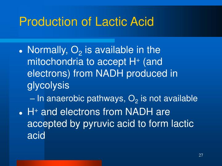 Production of Lactic Acid