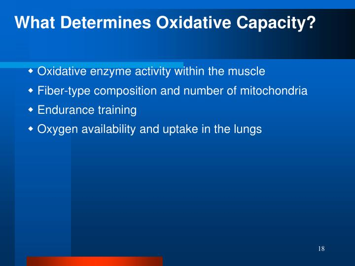 What Determines Oxidative Capacity?