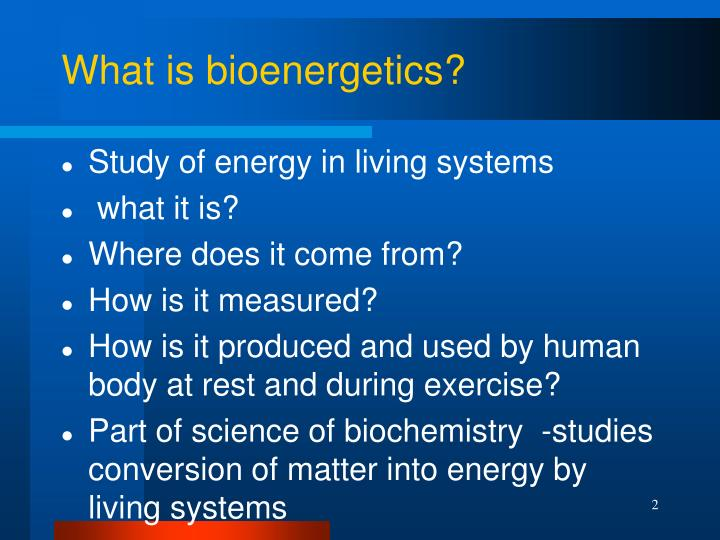 What is bioenergetics