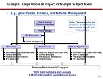 example large global bi project for multiple subject areas