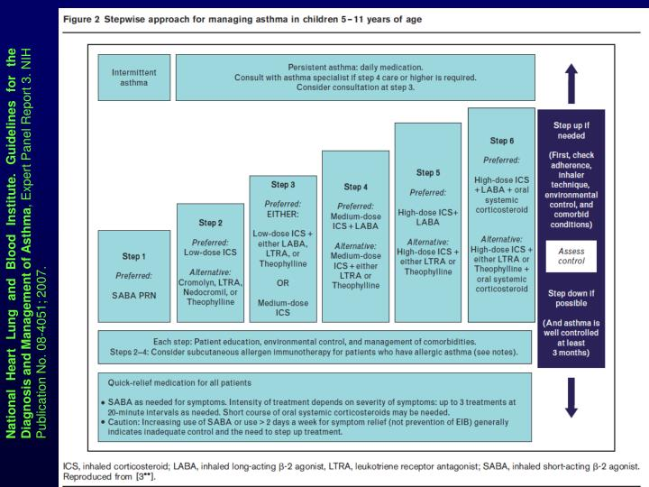 National Heart Lung and Blood Institute. Guidelines for the Diagnosis and Management of Asthma