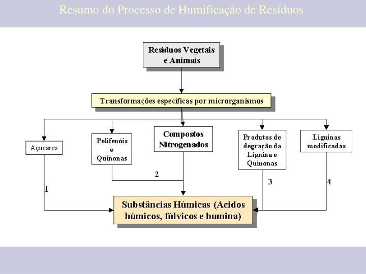 Resumo do Processo de Humificação de Resíduos