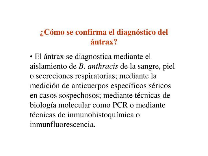 ¿Cómo se confirma el diagnóstico del ántrax?