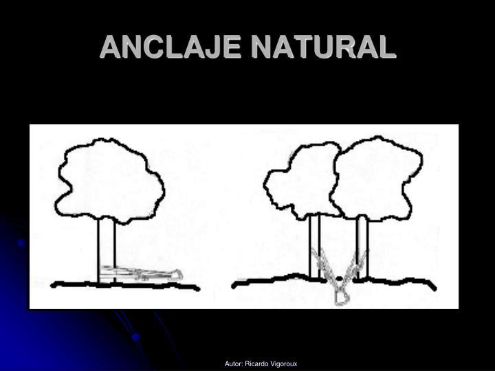 ANCLAJE NATURAL