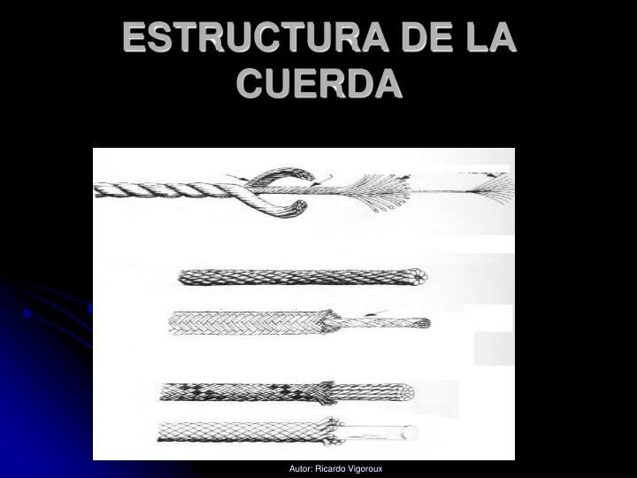 ESTRUCTURA DE LA CUERDA