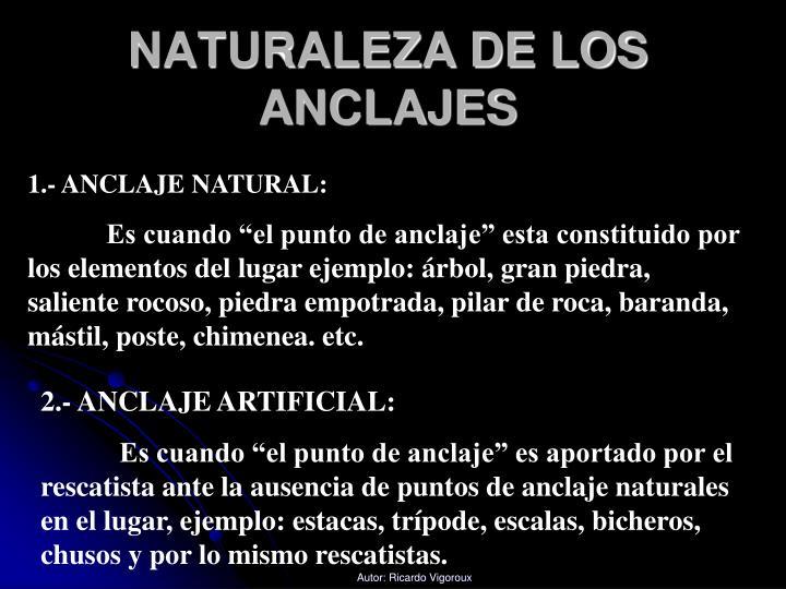 NATURALEZA DE LOS ANCLAJES