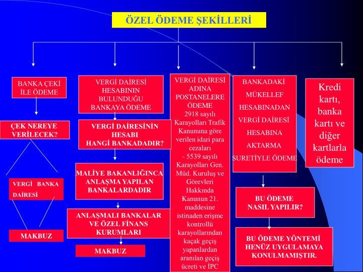 ÖZEL ÖDEME ŞEKİLLERİ