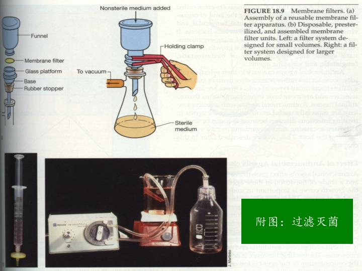 附图:过滤灭菌