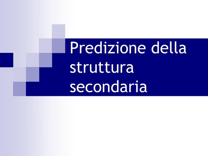 Predizione della struttura secondaria